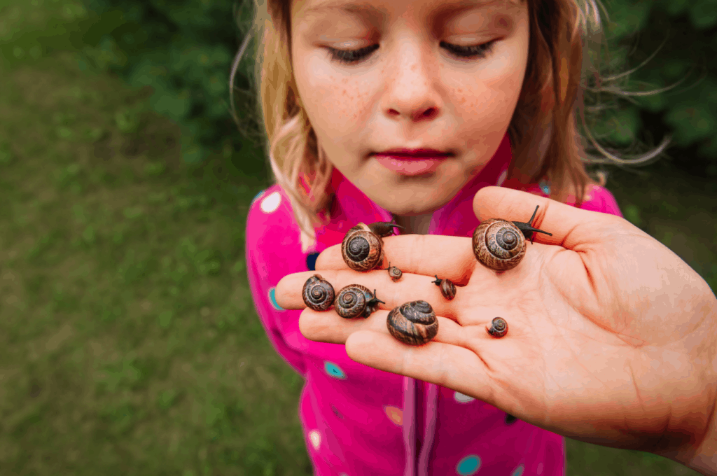 kid looking at snails